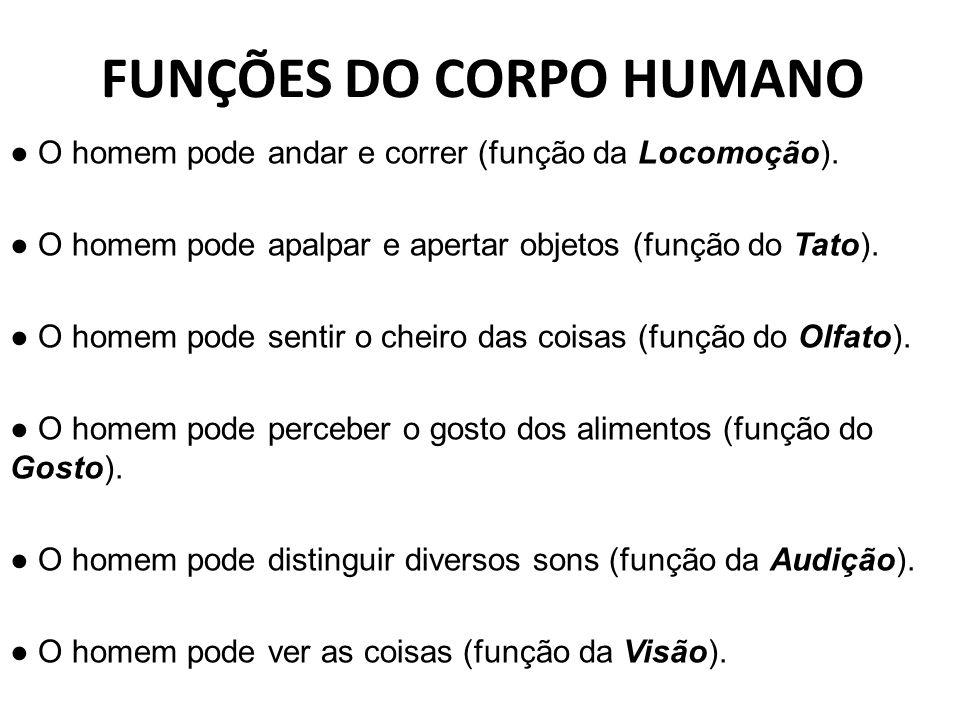 FUNÇÕES DO CORPO HUMANO ● O homem pode andar e correr (função da Locomoção).