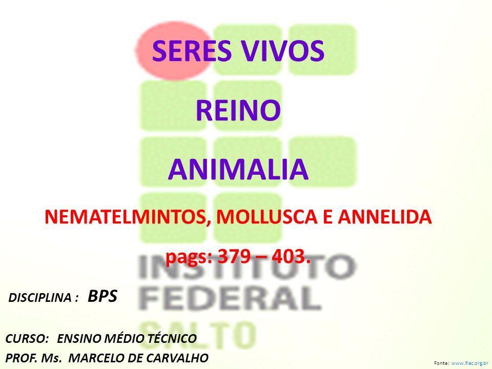 SERES VIVOS REINO ANIMALIA NEMATELMINTOS, MOLLUSCA E ANNELIDA pags: 379 – 403. DISCIPLINA : BPS CURSO: ENSINO MÉDIO TÉCNICO PROF. Ms. MARCELO DE CARVA