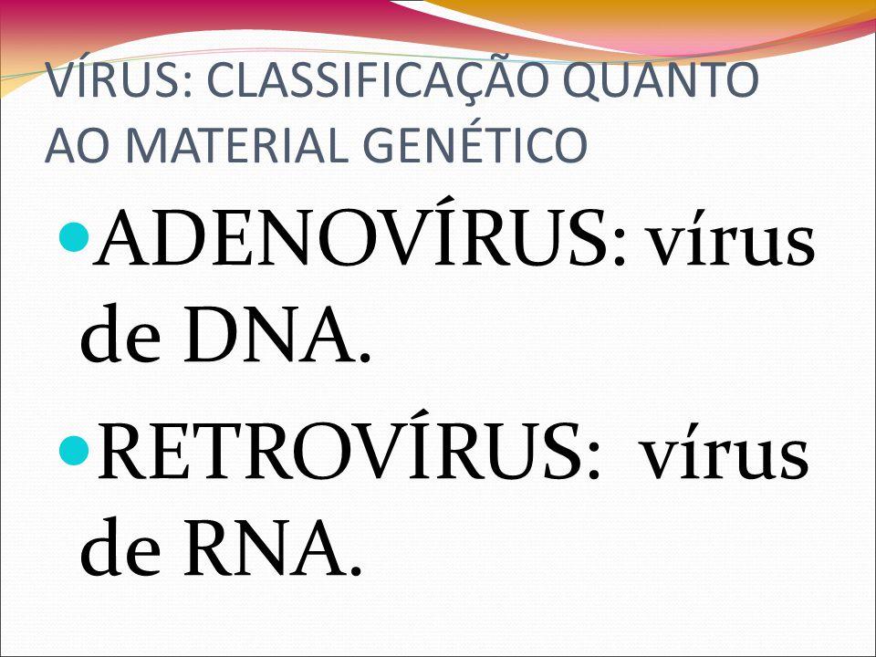 VÍRUS: CLASSIFICAÇÃO QUANTO AO MATERIAL GENÉTICO ADENOVÍRUS: vírus de DNA.