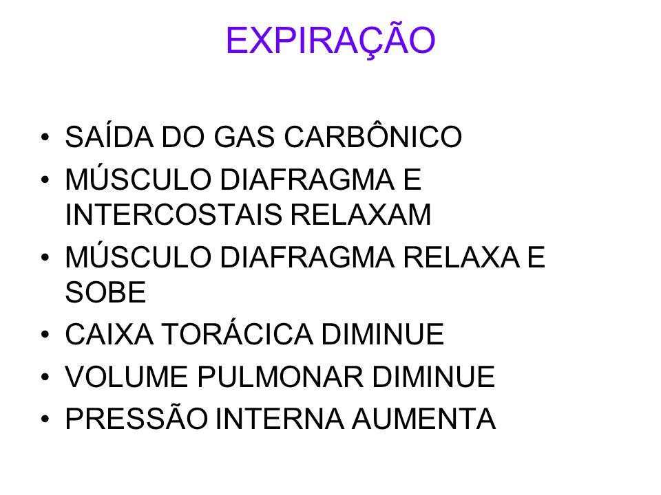 EXPIRAÇÃO SAÍDA DO GAS CARBÔNICO MÚSCULO DIAFRAGMA E INTERCOSTAIS RELAXAM MÚSCULO DIAFRAGMA RELAXA E SOBE CAIXA TORÁCICA DIMINUE VOLUME PULMONAR DIMINUE PRESSÃO INTERNA AUMENTA