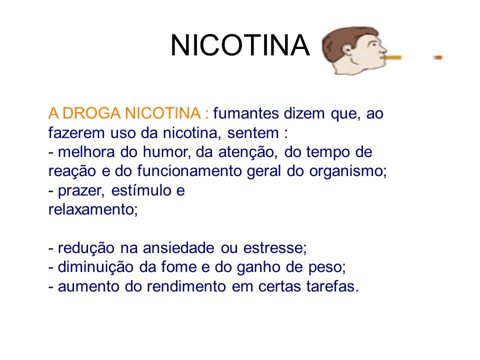 NICOTINA A DROGA NICOTINA : fumantes dizem que, ao fazerem uso da nicotina, sentem : - melhora do humor, da atenção, do tempo de reação e do funcionam