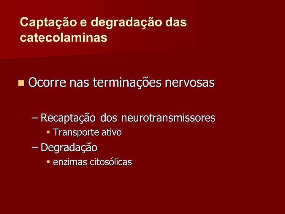 Ocorre nas terminações nervosas Ocorre nas terminações nervosas –Recaptação dos neurotransmissores  Transporte ativo –Degradação  enzimas citosólica