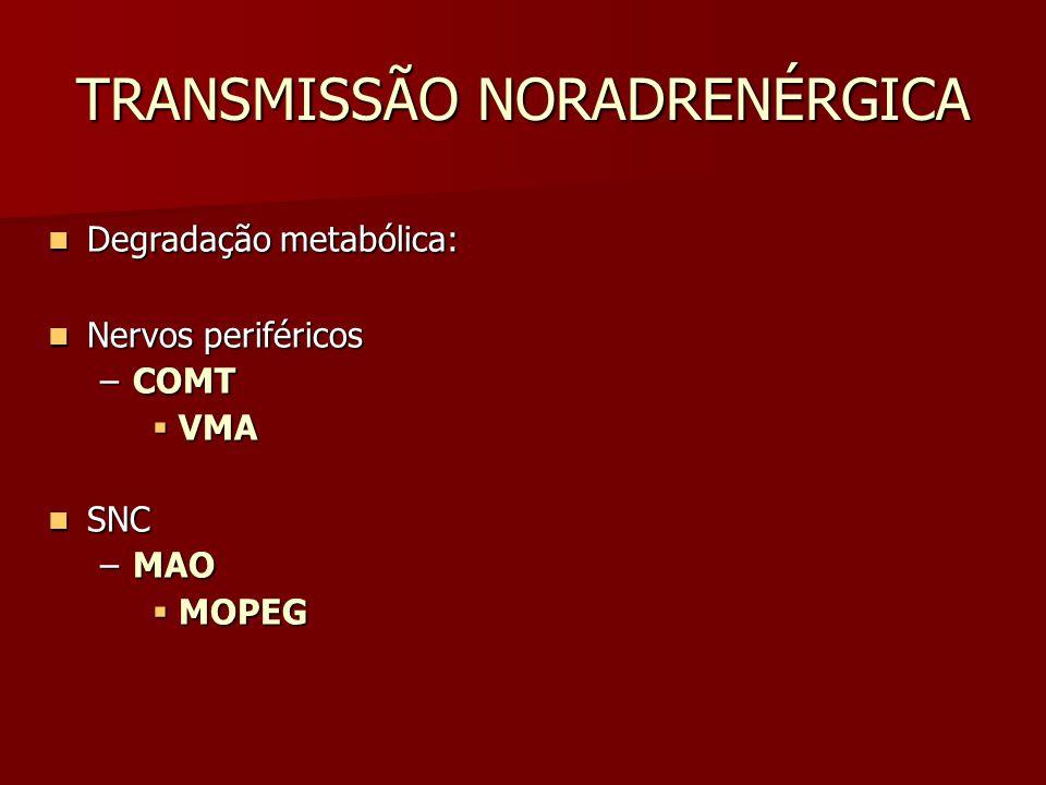 TRANSMISSÃO NORADRENÉRGICA Degradação metabólica: Degradação metabólica: Nervos periféricos Nervos periféricos –COMT  VMA SNC SNC –MAO  MOPEG