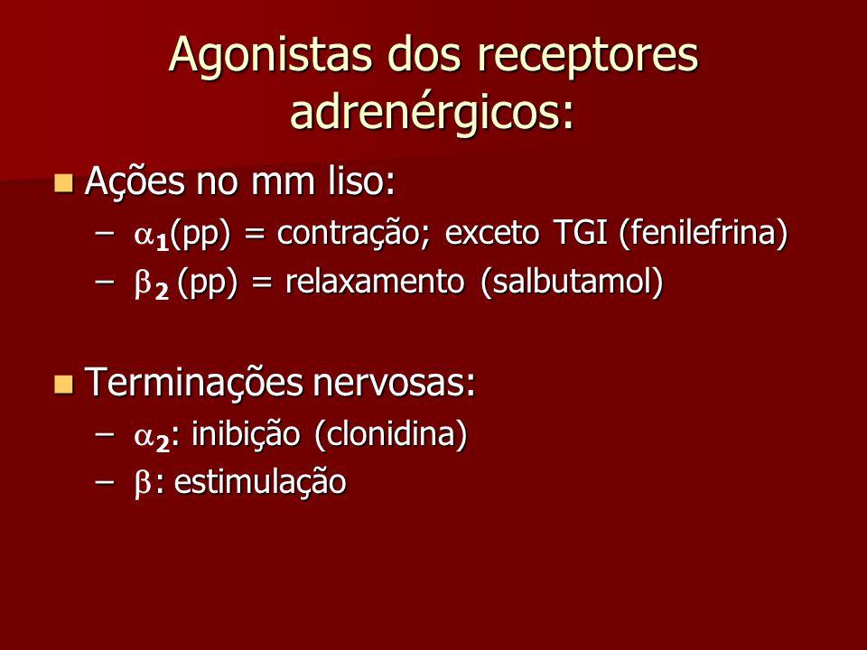 Agonistas dos receptores adrenérgicos: Ações no mm liso: Ações no mm liso: – (pp) = contração; exceto TGI (fenilefrina) –  1 (pp) = contração; exceto