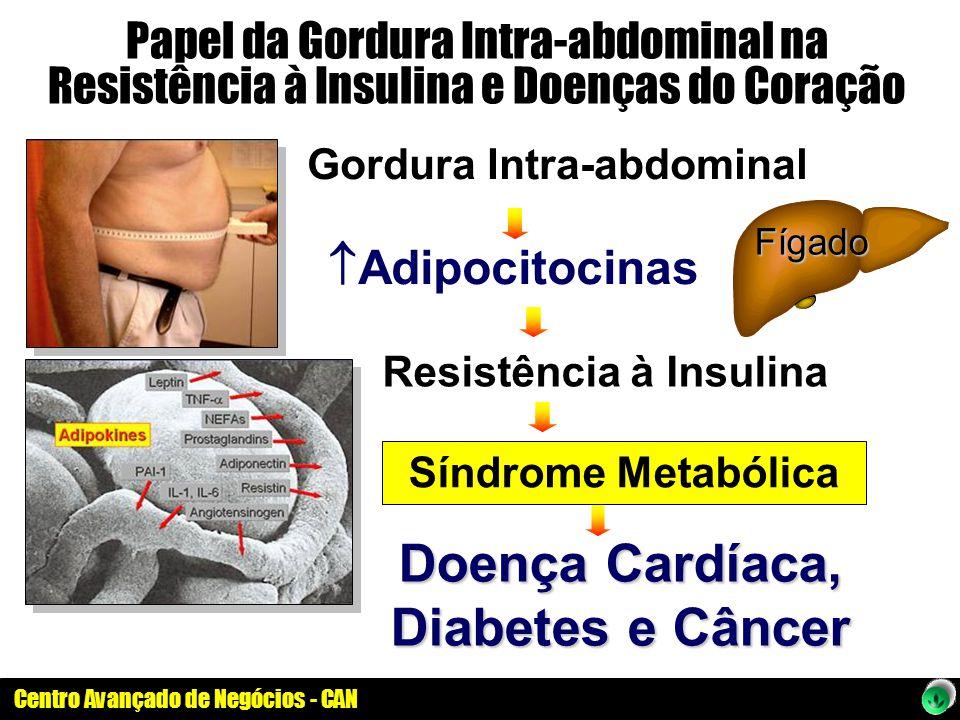 Centro Avançado de Negócios - CAN Papel da Gordura Intra-abdominal na Resistência à Insulina e Doenças do Coração Doença Cardíaca, Diabetes e Câncer R