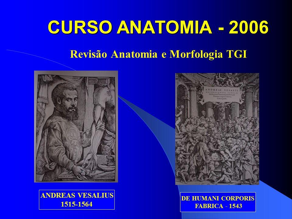 CURSO ANATOMIA - 2006 Revisão Anatomia e Morfologia TGI ANDREAS VESALIUS 1515-1564 DE HUMANI CORPORIS FABRICA - 1543
