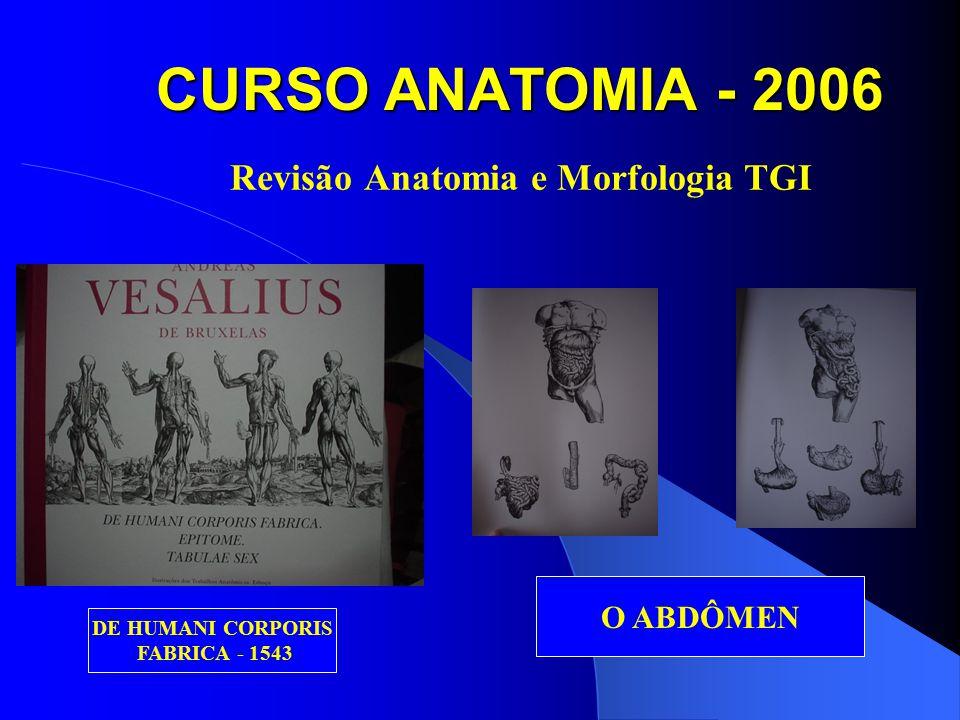 CURSO ANATOMIA - 2006 Revisão Anatomia e Morfologia TGI TUBO DIGESTÓRIO TUBO DIGESTÓRIO, FÍGADO, BAÇO