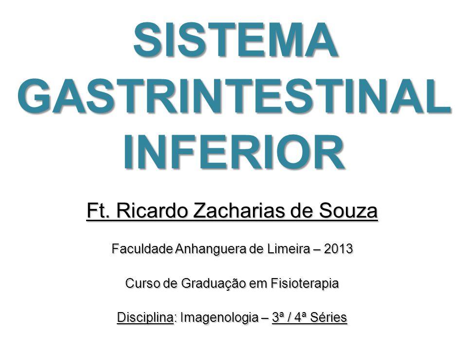 SISTEMA GASTRINTESTINAL INFERIOR Ft. Ricardo Zacharias de Souza Faculdade Anhanguera de Limeira – 2013 Curso de Graduação em Fisioterapia Disciplina: