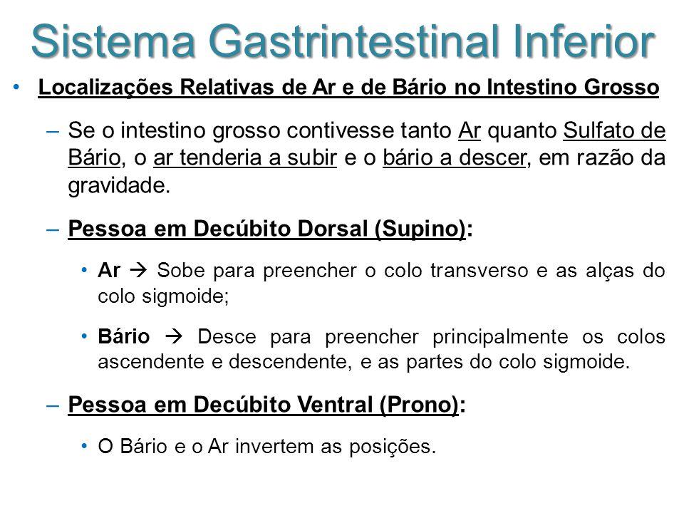Sistema Gastrintestinal Inferior Localizações Relativas de Ar e de Bário no Intestino Grosso –Se o intestino grosso contivesse tanto Ar quanto Sulfato