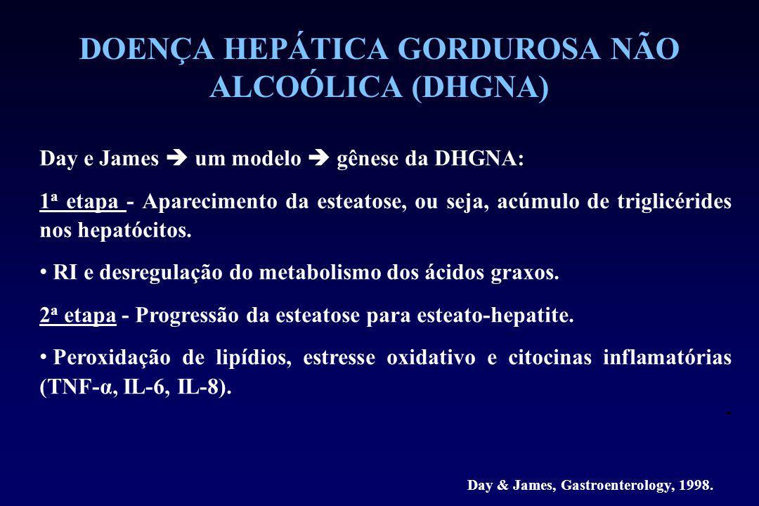 DOENÇA HEPÁTICA GORDUROSA NÃO ALCOÓLICA (DHGNA) Day e James  um modelo  gênese da DHGNA: 1 a etapa - Aparecimento da esteatose, ou seja, acúmulo de triglicérides nos hepatócitos.
