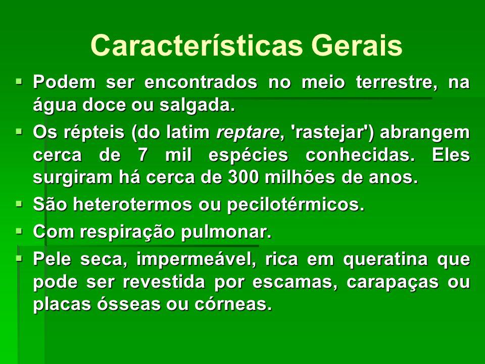 Lacertílios