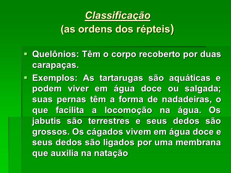 Classificação (as ordens dos répteis )  Quelônios: Têm o corpo recoberto por duas carapaças.  Exemplos: As tartarugas são aquáticas e podem viver em