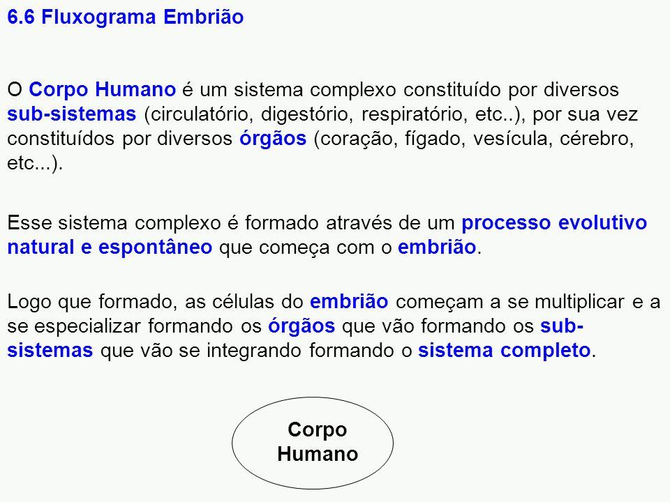 O Corpo Humano é um sistema complexo constituído por diversos sub-sistemas (circulatório, digestório, respiratório, etc..), por sua vez constituídos p