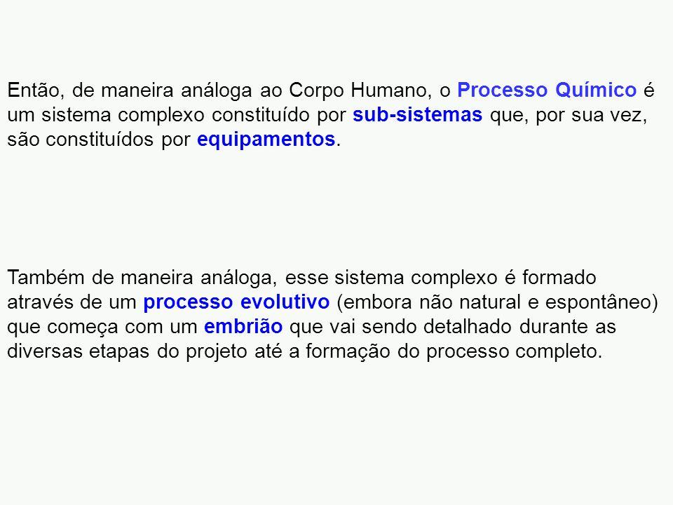 Então, de maneira análoga ao Corpo Humano, o Processo Químico é um sistema complexo constituído por sub-sistemas que, por sua vez, são constituídos por equipamentos.