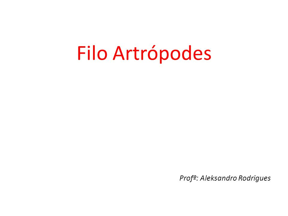 Filo Artrópodes Profº: Aleksandro Rodrigues