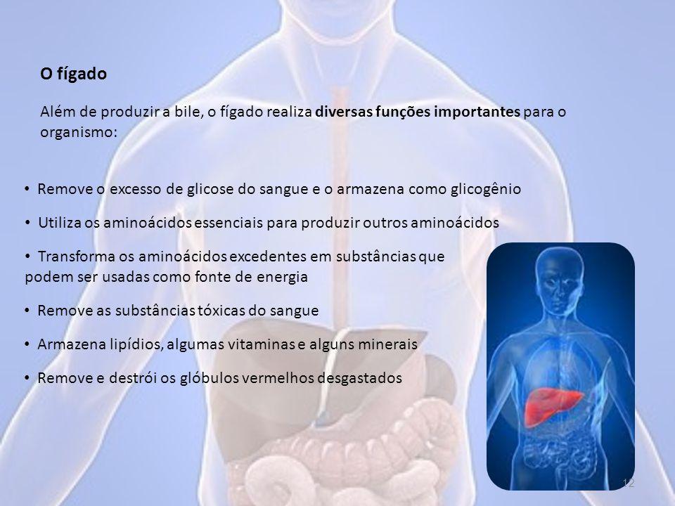 Além de produzir a bile, o fígado realiza diversas funções importantes para o organismo: O fígado Remove o excesso de glicose do sangue e o armazena como glicogênio Remove e destrói os glóbulos vermelhos desgastados Armazena lipídios, algumas vitaminas e alguns minerais Remove as substâncias tóxicas do sangue Transforma os aminoácidos excedentes em substâncias que podem ser usadas como fonte de energia Utiliza os aminoácidos essenciais para produzir outros aminoácidos 12