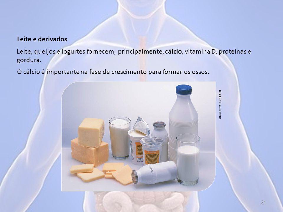 Leite e derivados Leite, queijos e iogurtes fornecem, principalmente, cálcio, vitamina D, proteínas e gordura.