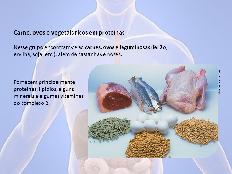 Carne, ovos e vegetais ricos em proteínas Fornecem principalmente proteínas, lipídios, alguns minerais e algumas vitaminas do complexo B.