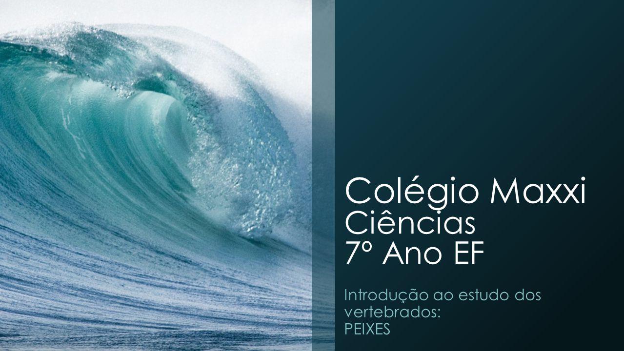 Colégio Maxxi Ciências 7º Ano EF Introdução ao estudo dos vertebrados: PEIXES