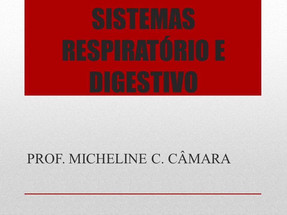 SISTEMAS RESPIRATÓRIO E DIGESTIVO PROF. MICHELINE C. CÂMARA