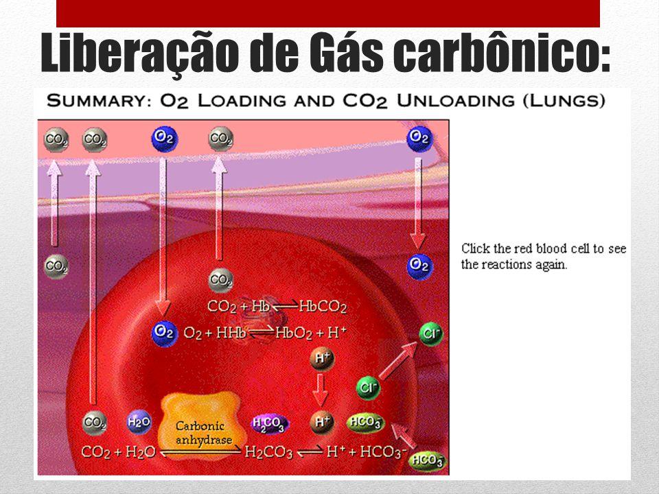 Liberação de Gás carbônico: