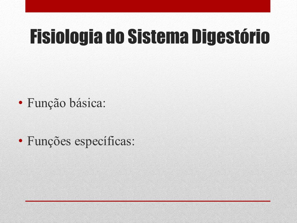 Fisiologia do Sistema Digestório Função básica: Funções específicas: