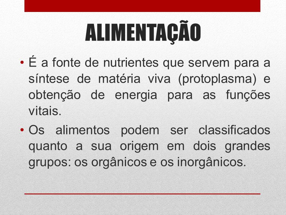 ALIMENTAÇÃO É a fonte de nutrientes que servem para a síntese de matéria viva (protoplasma) e obtenção de energia para as funções vitais. Os alimentos