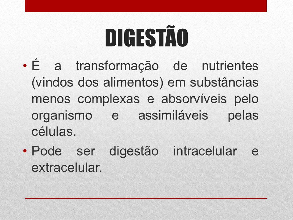 DIGESTÃO É a transformação de nutrientes (vindos dos alimentos) em substâncias menos complexas e absorvíveis pelo organismo e assimiláveis pelas célul