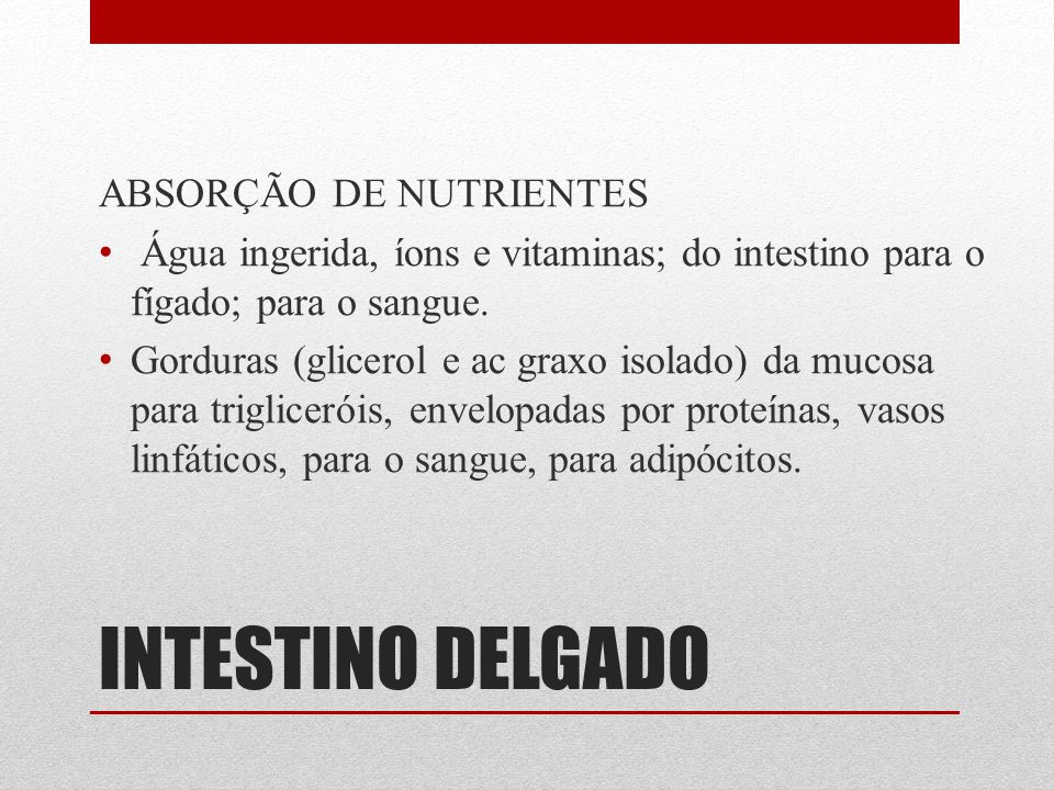 INTESTINO DELGADO ABSORÇÃO DE NUTRIENTES Água ingerida, íons e vitaminas; do intestino para o fígado; para o sangue. Gorduras (glicerol e ac graxo iso