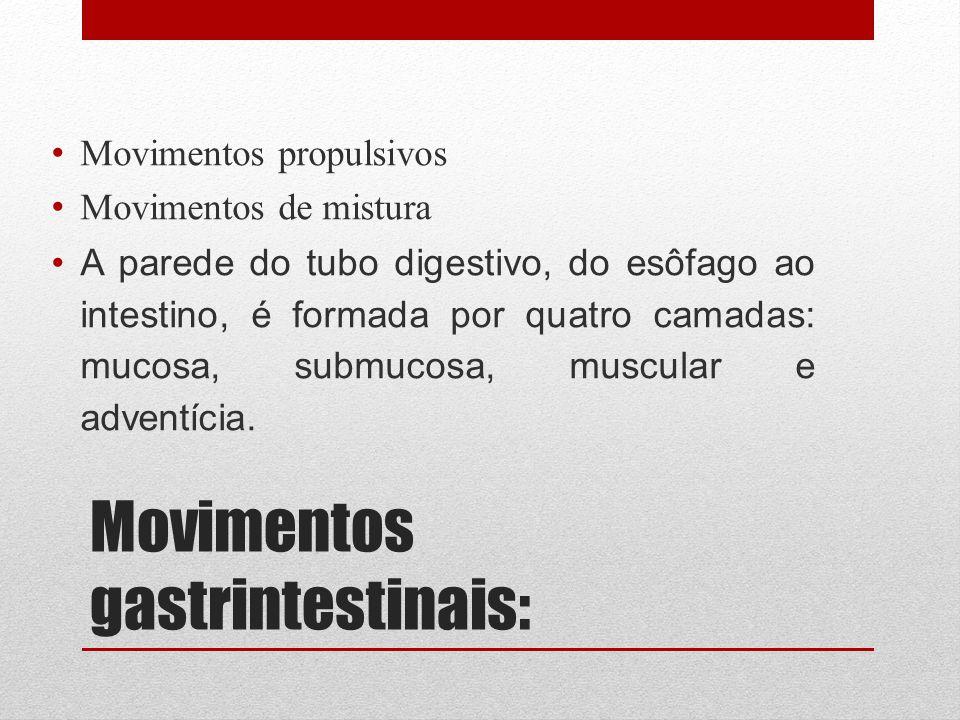 Movimentos gastrintestinais: Movimentos propulsivos Movimentos de mistura A parede do tubo digestivo, do esôfago ao intestino, é formada por quatro ca