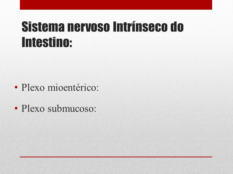 Sistema nervoso Intrínseco do Intestino: Plexo mioentérico: Plexo submucoso: