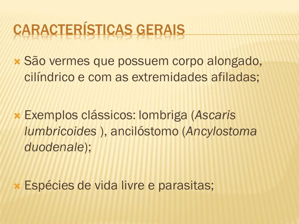  São vermes que possuem corpo alongado, cilíndrico e com as extremidades afiladas;  Exemplos clássicos: lombriga (Ascaris lumbricoides ), ancilóstom