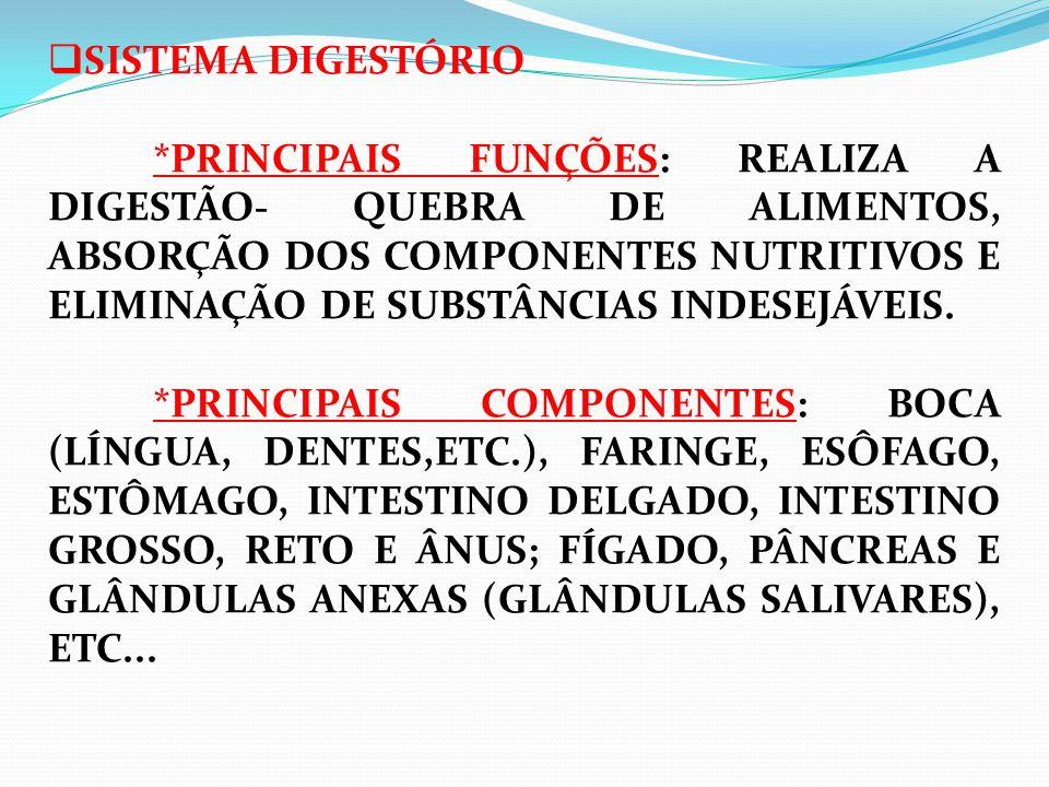  SISTEMA DIGESTÓRIO *PRINCIPAIS FUNÇÕES: REALIZA A DIGESTÃO- QUEBRA DE ALIMENTOS, ABSORÇÃO DOS COMPONENTES NUTRITIVOS E ELIMINAÇÃO DE SUBSTÂNCIAS INDESEJÁVEIS.