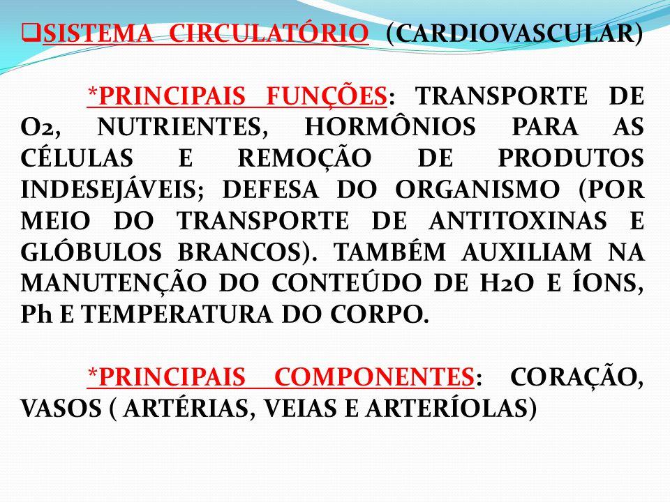  SISTEMA CIRCULATÓRIO (CARDIOVASCULAR) *PRINCIPAIS FUNÇÕES: TRANSPORTE DE O2, NUTRIENTES, HORMÔNIOS PARA AS CÉLULAS E REMOÇÃO DE PRODUTOS INDESEJÁVEIS; DEFESA DO ORGANISMO (POR MEIO DO TRANSPORTE DE ANTITOXINAS E GLÓBULOS BRANCOS).