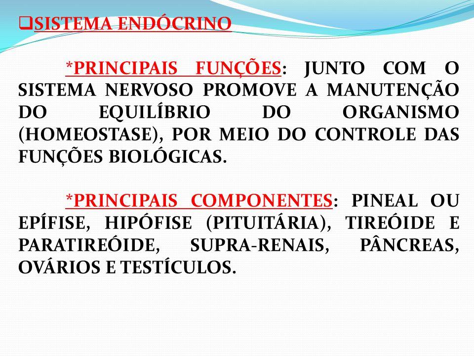  SISTEMA ENDÓCRINO *PRINCIPAIS FUNÇÕES: JUNTO COM O SISTEMA NERVOSO PROMOVE A MANUTENÇÃO DO EQUILÍBRIO DO ORGANISMO (HOMEOSTASE), POR MEIO DO CONTROLE DAS FUNÇÕES BIOLÓGICAS.