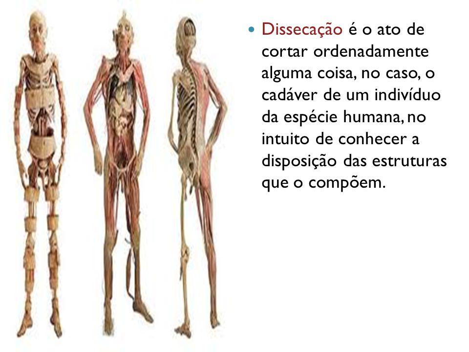Dissecação é o ato de cortar ordenadamente alguma coisa, no caso, o cadáver de um indivíduo da espécie humana, no intuito de conhecer a disposição das