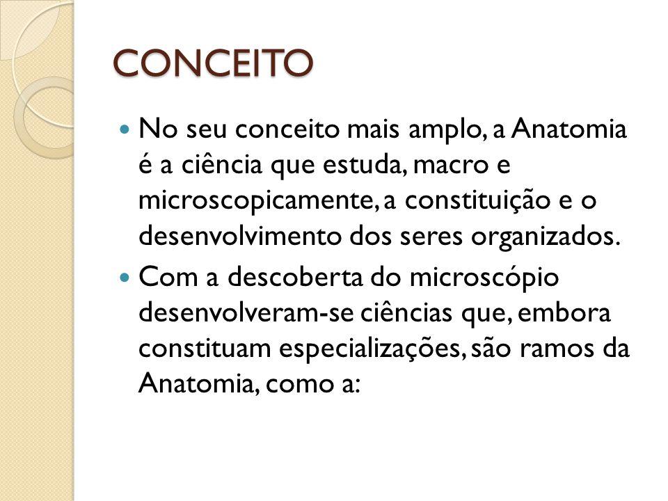 Citologia (estudo da célula) Histologia (estudo dos tecidos e como se organizam para formação de órgãos) Embriologia (estudo do desenvolvimento do indivíduo)