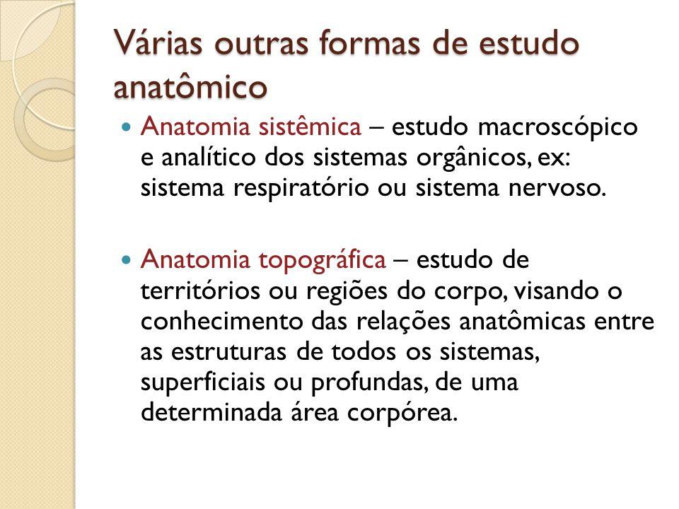 Várias outras formas de estudo anatômico Anatomia sistêmica – estudo macroscópico e analítico dos sistemas orgânicos, ex: sistema respiratório ou sist