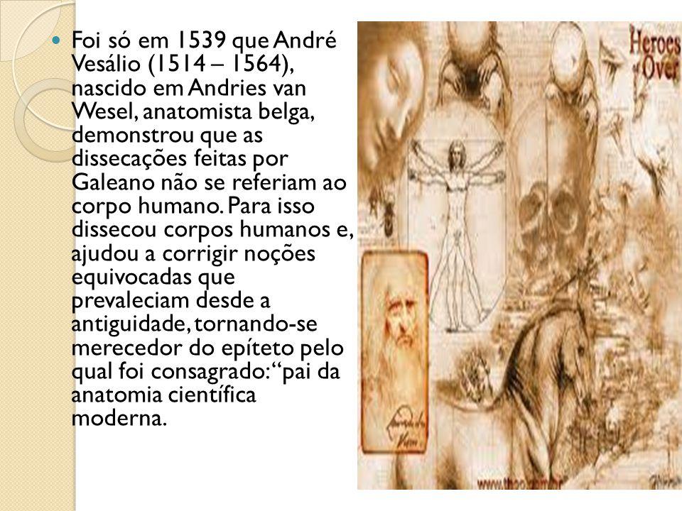 Foi só em 1539 que André Vesálio (1514 – 1564), nascido em Andries van Wesel, anatomista belga, demonstrou que as dissecações feitas por Galeano não s
