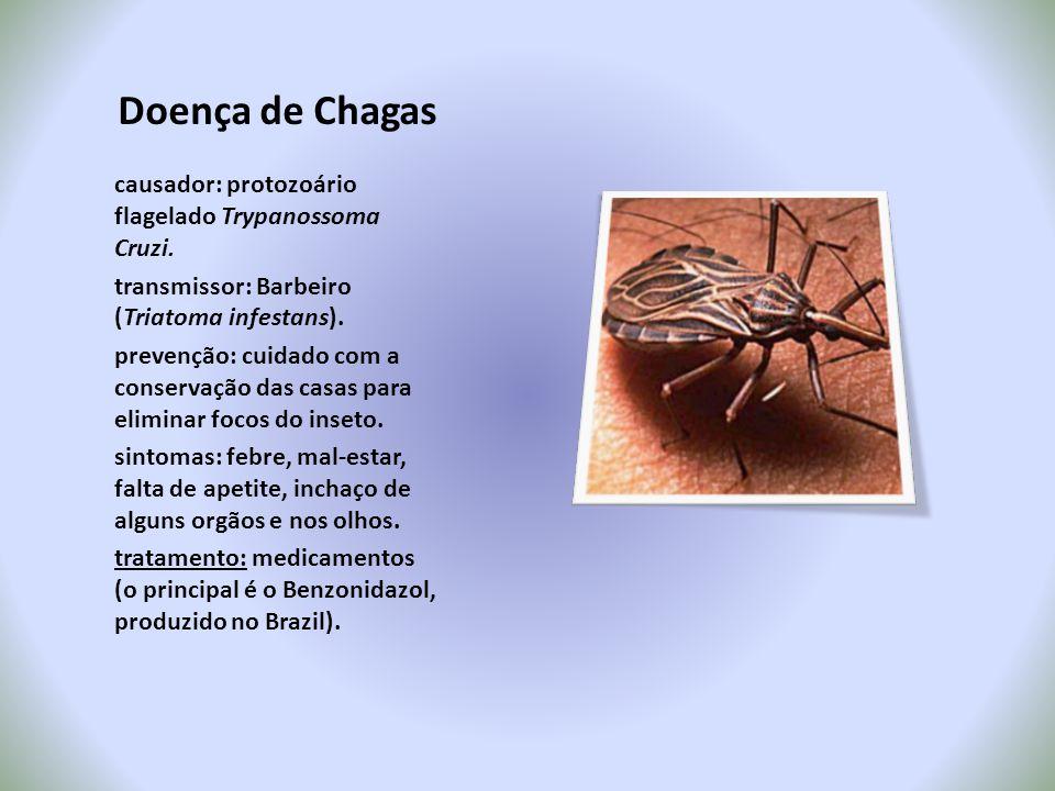 Doença de Chagas causador: protozoário flagelado Trypanossoma Cruzi. transmissor: Barbeiro (Triatoma infestans). prevenção: cuidado com a conservação