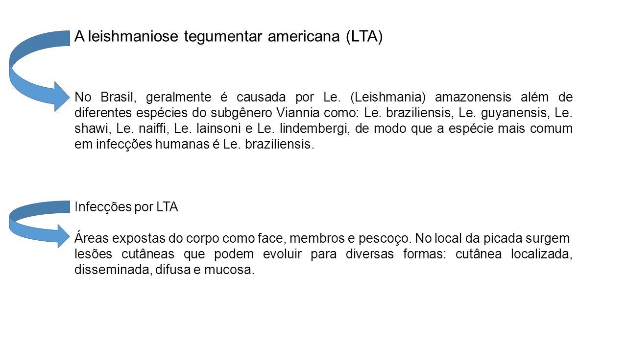 A leishmaniose tegumentar americana (LTA) No Brasil, geralmente é causada por Le.