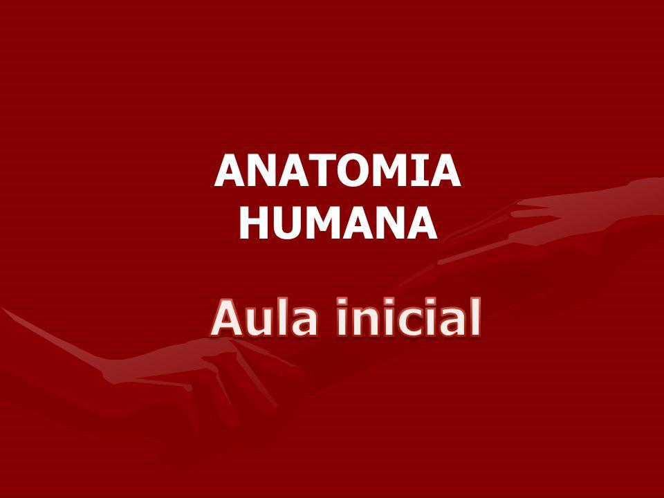 Anatomia Ciência que estuda a estrutura macroscópica e microscópica do corpo dos seres vivos.