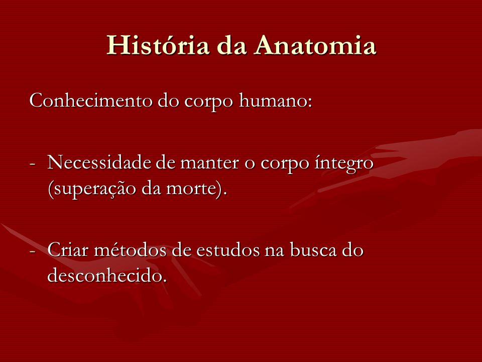 História da Anatomia Conhecimento do corpo humano: -Necessidade de manter o corpo íntegro (superação da morte). -Criar métodos de estudos na busca do