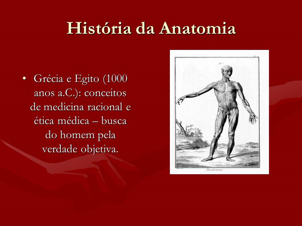 História da Anatomia Grécia e Egito (1000 anos a.C.): conceitos de medicina racional e ética médica – busca do homem pela verdade objetiva.Grécia e Eg