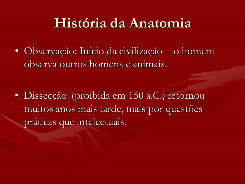 História da Anatomia Observação: Início da civilização – o homem observa outros homens e animais.Observação: Início da civilização – o homem observa o