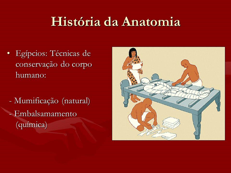 História da Anatomia Egípcios: Técnicas de conservação do corpo humano:Egípcios: Técnicas de conservação do corpo humano: - Mumificação (natural) - Mu