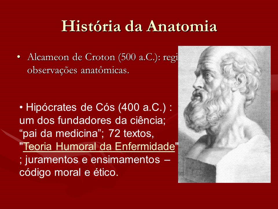História da Anatomia Alcameon de Croton (500 a.C.): registros de observações anatômicas.Alcameon de Croton (500 a.C.): registros de observações anatôm