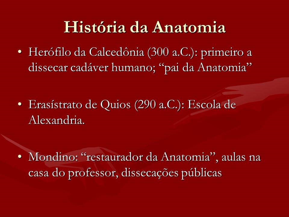 """História da Anatomia Herófilo da Calcedônia (300 a.C.): primeiro a dissecar cadáver humano; """"pai da Anatomia""""Herófilo da Calcedônia (300 a.C.): primei"""