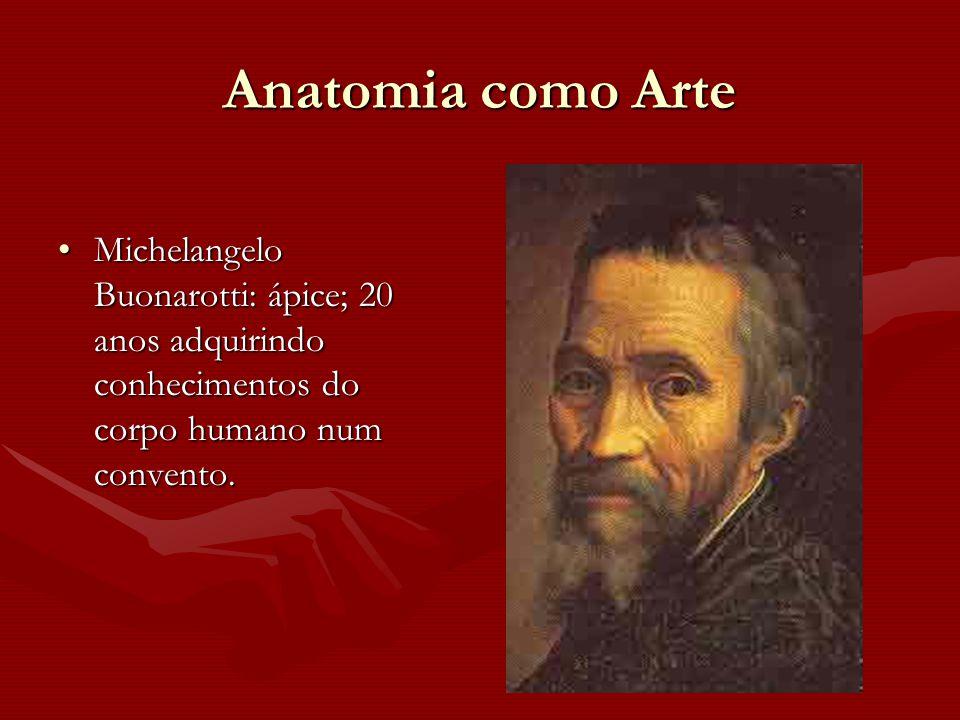 Anatomia como Arte Michelangelo Buonarotti: ápice; 20 anos adquirindo conhecimentos do corpo humano num convento.Michelangelo Buonarotti: ápice; 20 an