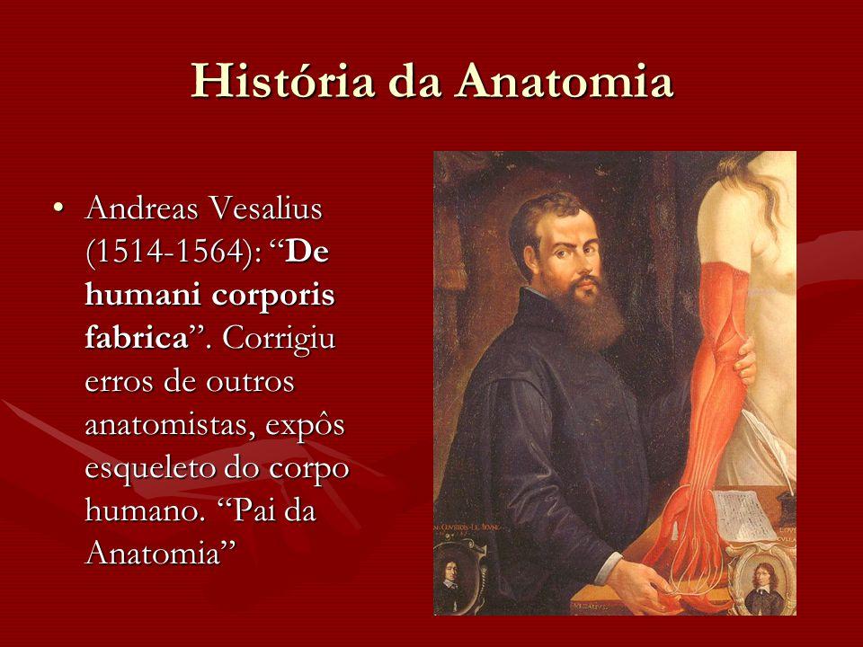 """História da Anatomia Andreas Vesalius (1514-1564): """"De humani corporis fabrica"""". Corrigiu erros de outros anatomistas, expôs esqueleto do corpo humano"""